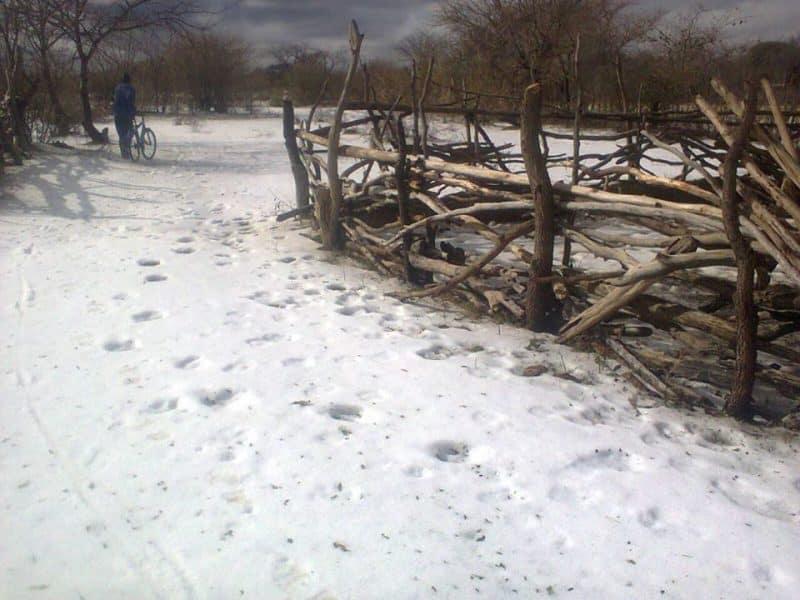 Snowfall hits hard on Zimbabwean villagers- bizarre