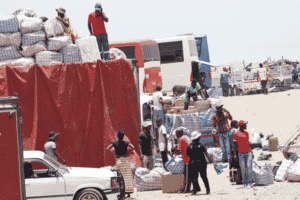 ZIMRA introduces heavy fines for transit truckers to stop smuggling