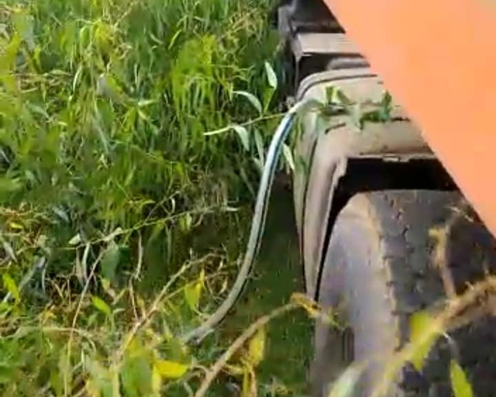 phumaphambili driver caught stealing diesel