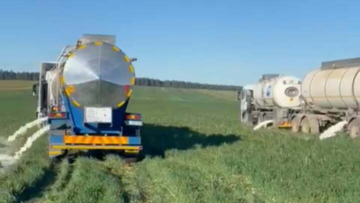 Tanker trucks dump milk