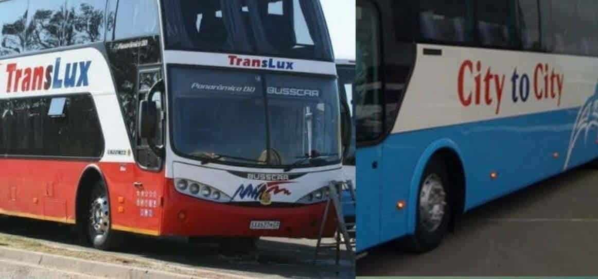 Translux and City to City bus services set to shed 350 jobs